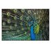 Artist Lane 'Glamour' by Andrew Paranavitana Photographic Print on Wrapped Canvas