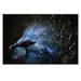 Artist Lane 'Ornamental Nature' by Andrew Paranavitana Photographic Print on Wrapped Canvas