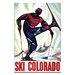 Artist Lane 'Ski Colorado' Graphic Art Wrapped on Canvas