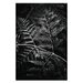 Artist Lane 'Grove' by Andrew Paranavitana Photographic Print on Wrapped Canvas