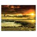 Artist Lane 'Positive Reinforcement' by Andrew Paranavitana Photographic Print on Wrapped Canvas