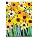 Artist Lane 'Rosy's Daisies' by Anna Blatman Framed Art Print on Wrapped Canvas