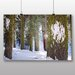 Alpen Home Sequoia Forest Snow Photographic Print