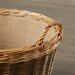 Alpen Home Tenleytown Unpeeled Log Basket with Lining