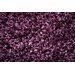 House Additions Arola Purple Area Rug