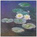 House Additions 'Ninfee Detail' by Monet Art Print Plaque