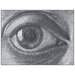 "House Additions ""Eye"" by Escher Art Print Plaque"