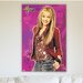 House Additions Hanna Montana Vintage Advertisement Plaque