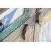 Home & Haus Gloria 3-Door Sideboard