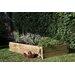 Forest Garden Caledonian Rectangular Raised Garden