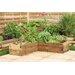 Forest Garden Caledonian Novelty Raised Garden