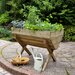 Forest Garden Novelty Raised Garden