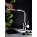 Eisl Single Handle Surface Monobloc Mixer Tap with Pull Out Spray