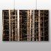 Big Box Art Deep Forest Wood Trees Photographic Print