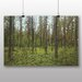 Big Box Art Green Forest Photographic Print Wrapped on Canvas