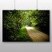 Big Box Art 'Green Woodland Path' Photographic Print