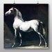 Big Box Art 'White Horse' by Gericault Theodore Art Print