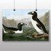 Big Box Art 'Penguins' by John James Audubon Art Print