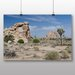 Big Box Art Joshua Tree National Park Photographic Print on Canvas