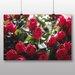 Big Box Art 'Pretty Flowers No.3' Photographic Print