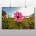 Big Box Art 'Summer Meadow Field No.6' Photographic Print
