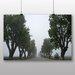 Big Box Art 'The Misty Tree Path' Photographic Print