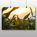 Big Box Art 'The Crops in Sunlight' Photographic Print