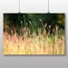 Big Box Art 'Summer Meadow Field No.1' Photographic Print