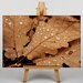 Big Box Art Water Drops on Leaves Photographic Print on Canvas