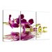 Urban Designs Orchid 3 Piece Photographic Print Wrapped on Canvas Set