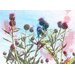 Andrew Lee Flower Reaching for the Sky by Andrew Lee Graphic Art Wrapped on Canvas