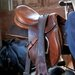David & David Studio 'Harness Horse 1' by Laurence David Framed Photographic Print