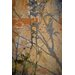 David & David Studio 'Japanese Branches 2' by Laurence David Graphic Art