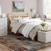 Andover Mills Amory Bed Frame
