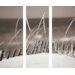 Pro-Art Glasbild Beige And Sedge, Kunstdruck
