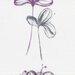 Gardinia Flächenvorhang Flower