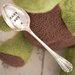 Ladeda! Living Mirrored Teaspoon