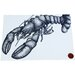 Cream Cornwall Lobster Graphic Art
