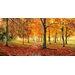 """DEInternationalGraphics """"Herbstimpression"""" von Cornelia Richter, Fotodruck"""
