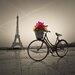 """DEInternationalGraphics Acrylglasbild """"Emotion"""" von Assaf Frank, Fotodruck"""