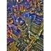 """DEInternationalGraphics """"Sydney´s Skyline"""" von Aurélien Terrible, Fotodruck"""