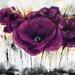 """DEInternationalGraphics """"Pavot violet III"""" von Isabelle Zacher- Finet, Kunstdruck"""