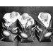 """DEInternationalGraphics """"Triplets 1959"""" von Anonym, Fotodruck"""