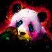 """DEInternationalGraphics """"Panda Pop"""" von Patrice Murciano, Kunstdruck"""