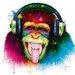 DEInternationalGraphics DJ Monkey Kunstdruck von Patrice Murciano