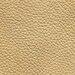 EXP 2127 Sand
