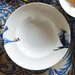 Catchii Birds of Paradise 27.2 cm Crane Head and Tail Pasta Plate