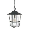 Capital Lighting Creekside 1 Light Outdoor Hanging Lantern