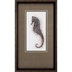 Propac Images Seahorse 2 Piece Framed Graphic Art Set