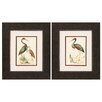 Propac Images Water Birds 2 Piece Framed Painting Print Set